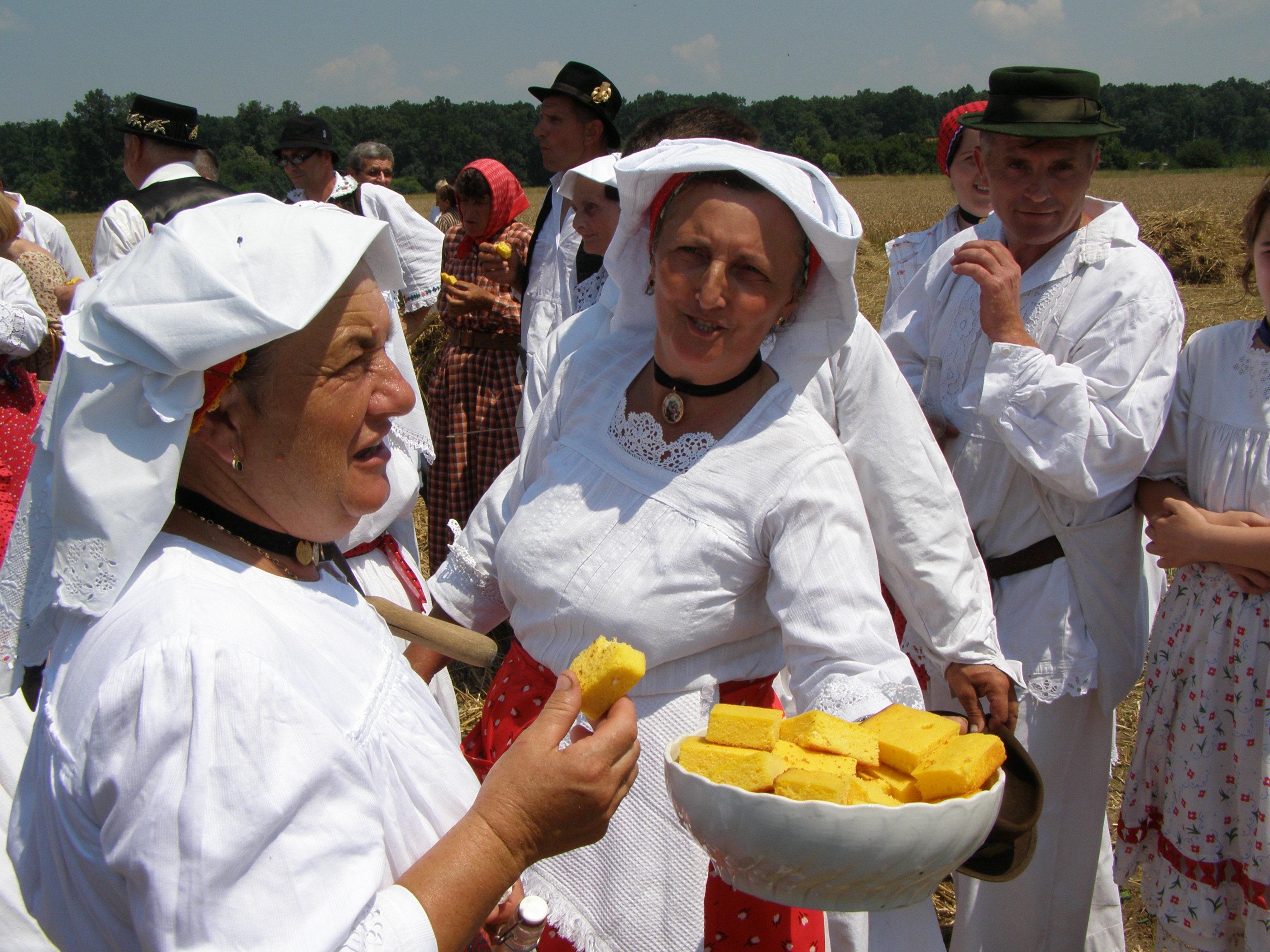 Kruh naš svagdašnji - žetva i vršidba u prošlosti